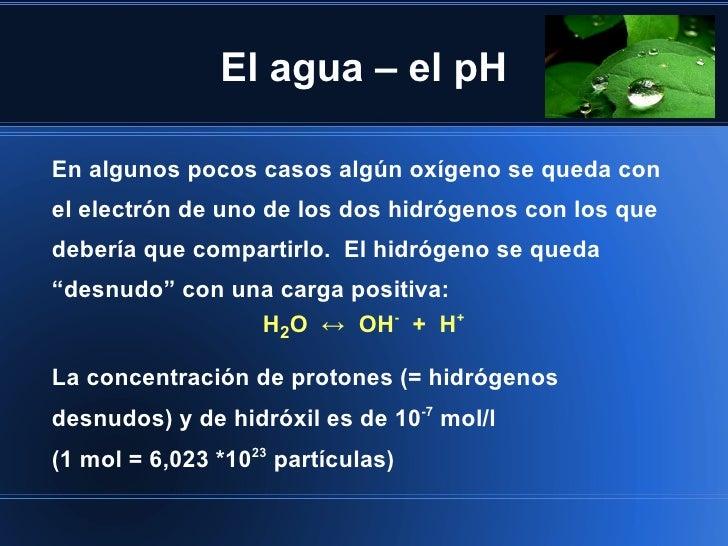 El agua – el pHEn algunos pocos casos algún oxígeno se queda conel electrón de uno de los dos hidrógenos con los quedeberí...