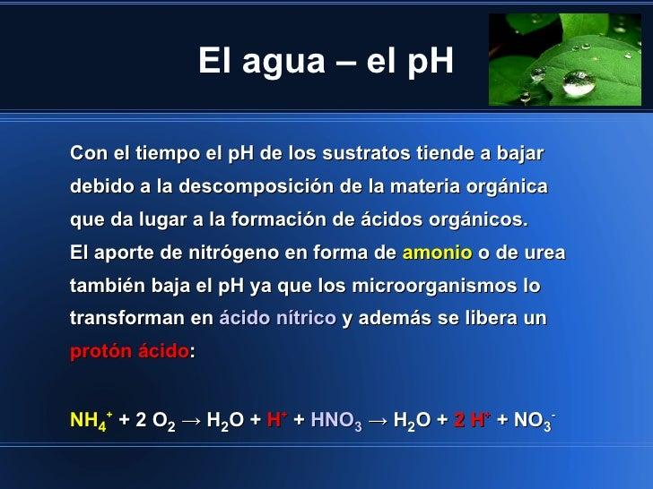 El agua – el pHCon el tiempo el pH de los sustratos tiende a bajardebido a la descomposición de la materia orgánicaque da ...