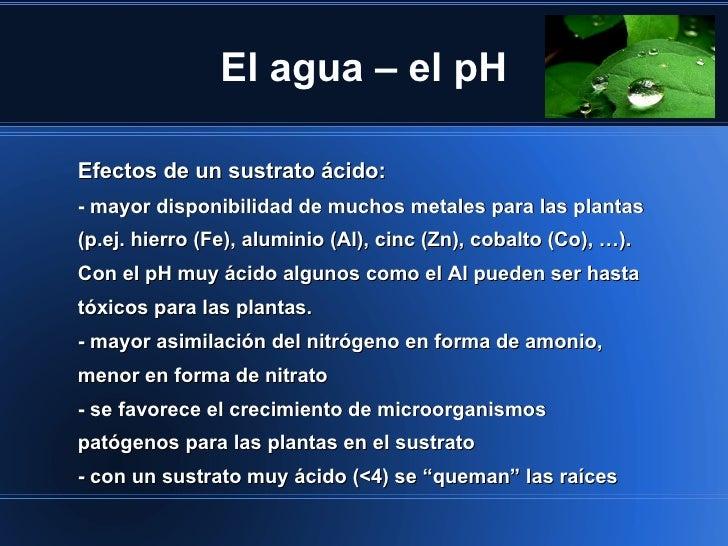 El agua – el pHEfectos de un sustrato ácido:- mayor disponibilidad de muchos metales para las plantas(p.ej. hierro (Fe), a...