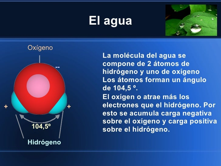 El agua    Oxígeno                         La molécula del agua se              --         compone de 2 átomos de         ...