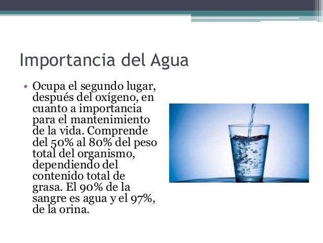 El Agua Y Los Electrolitos
