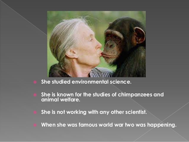 """ """"When you meet chimps, you meet  individual personalities. When a baby  chimp looks at you, its jus a human baby.  We ha..."""
