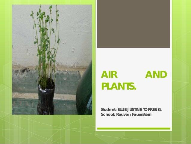 AIR AND PLANTS. Student: ELLIE JUSTINE TORRES G. School: Reuven Feuerstein