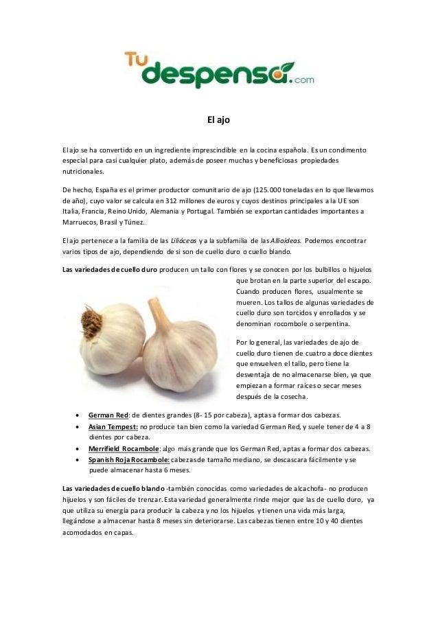 El ajo El ajo se ha convertido en un ingrediente imprescindible en la cocina española. Es un condimento especial para casi...