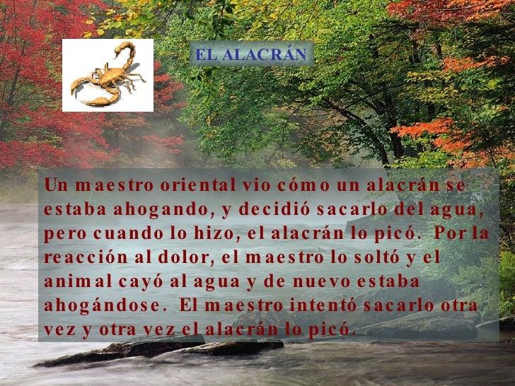 El Alacr C!N Slide 2