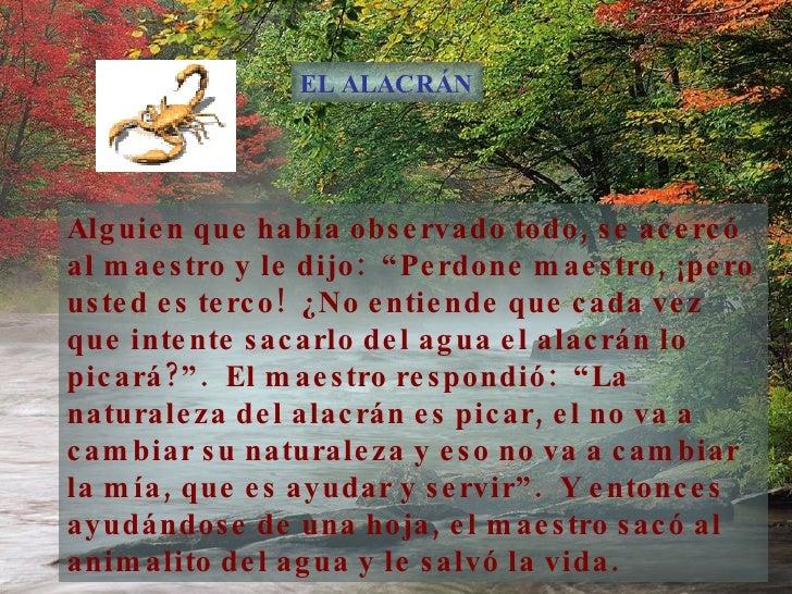 El Alacr C!N Slide 3