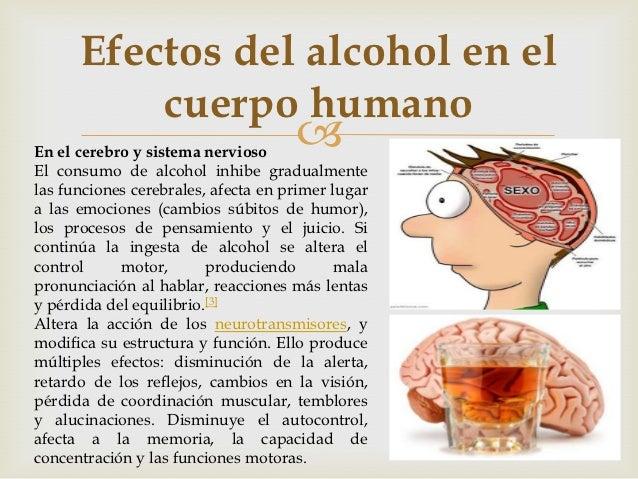 La codificación del alcohol las grandes cebollas
