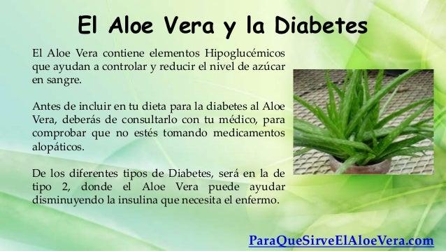 El aloe vera y la diabetes