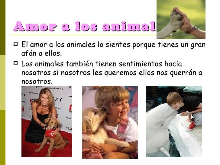 Amor a los animales. <ul><li>El amor a los animales lo sientes porque tienes un gran afán a ellos. </li></ul><ul><li>Los a...