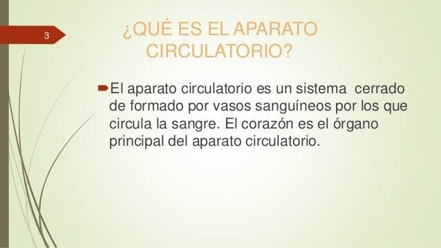 El aparato circulatorio Slide 3