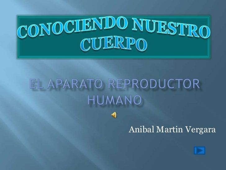 Anibal Martin Vergara