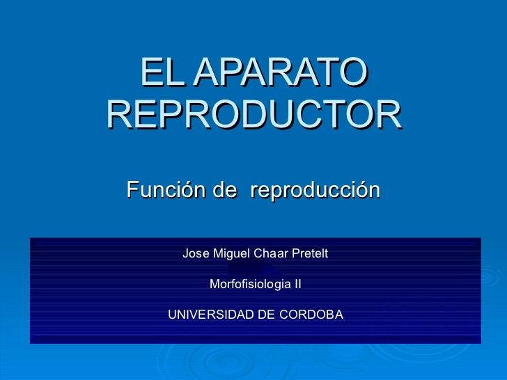 EL APARATO REPRODUCTOR Función de  reproducción Jose Miguel Chaar Pretelt Morfofisiologia II UNIVERSIDAD DE CORDOBA