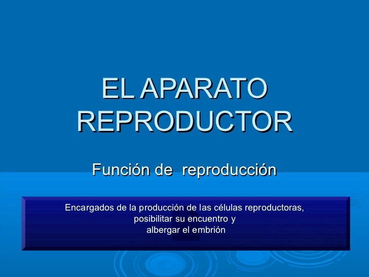 EL APARATO  REPRODUCTOR      Función de reproducciónEncargados de la producción de las células reproductoras,             ...