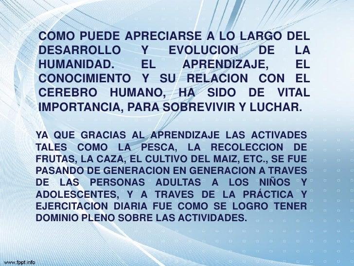 COMO PUEDE APRECIARSE A LO LARGO DELDESARROLLO     Y   EVOLUCION    DE  LAHUMANIDAD.     EL    APRENDIZAJE,    ELCONOCIMIE...