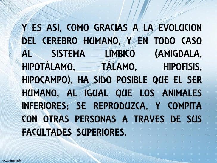 Y ES ASI, COMO GRACIAS A LA EVOLUCIONDEL CEREBRO HUMANO, Y EN TODO CASOAL     SISTEMA    LIMBICO   (AMIGDALA,HIPOTÁLAMO,  ...