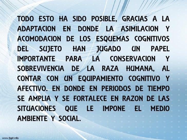 TODO ESTO HA SIDO POSIBLE, GRACIAS A LAADAPTACION EN DONDE LA ASIMILACION YACOMODACION DE LOS ESQUEMAS COGNITIVOSDEL SUJET...