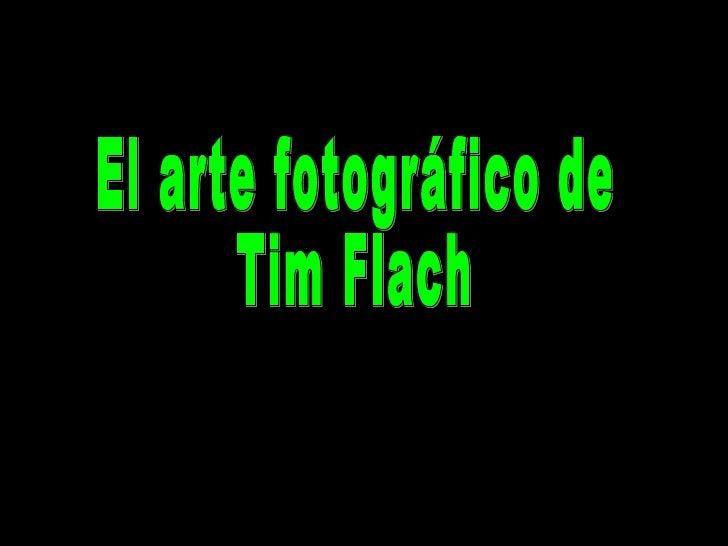 El arte fotográfico de  Tim Flach