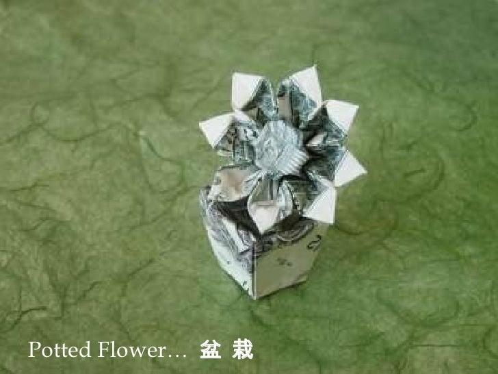 el arte de won park origami