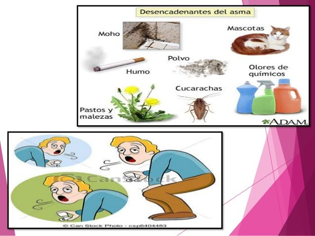 Beclometasona efectos secundarios - Farmacia