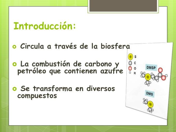 Ciclo del Azufre Slide 2