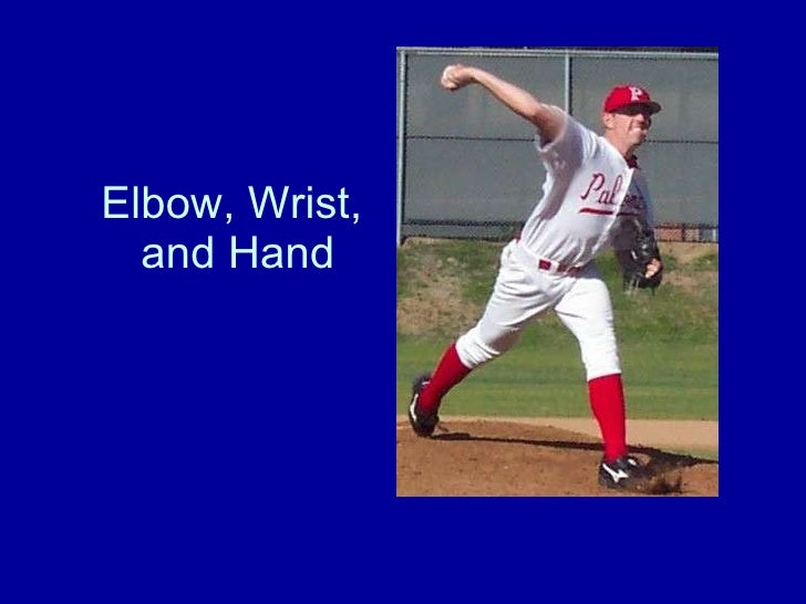 Elbow, Wrist,  and Hand