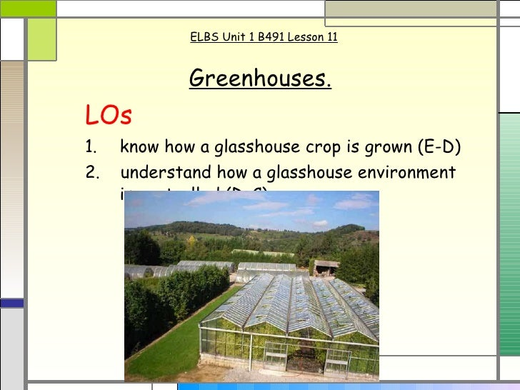 ELBS Unit 1 B491 Lesson 11 Greenhouses.   LOs 1.   know how a glasshouse crop is grown (E-D)  2.  understand how a glassho...