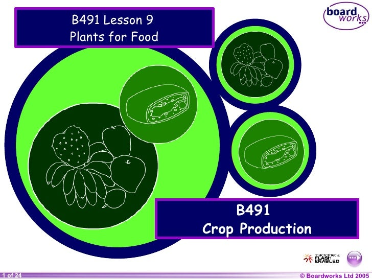 B491 Lesson 9  Plants for Food B491  Crop Production
