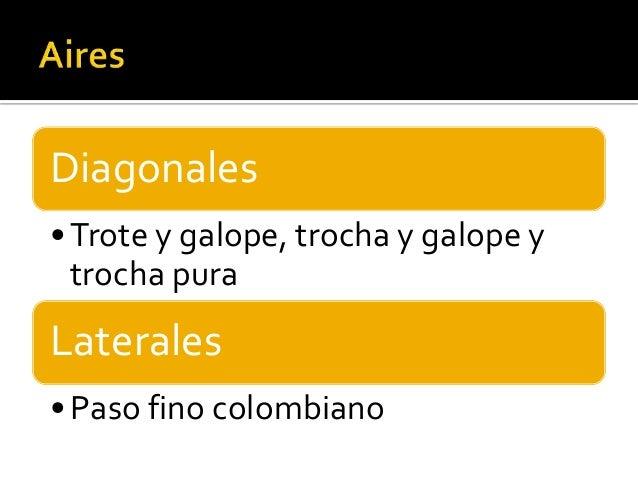 Diagonales•Trote y galope, trocha y galope ytrocha puraLaterales•Paso fino colombiano