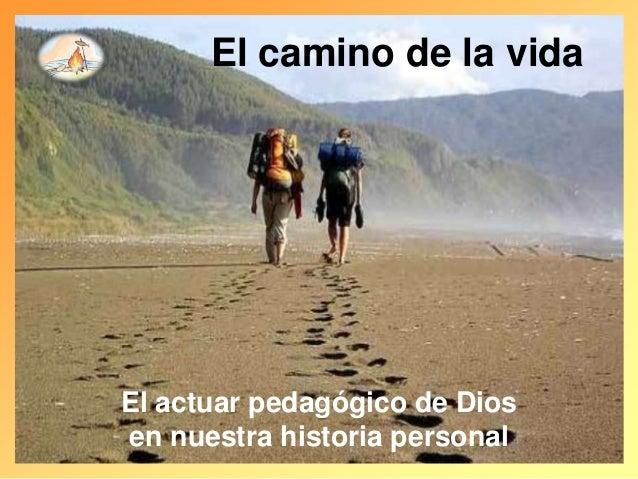 El camino de la vida El actuar pedagógico de Dios en nuestra historia personal