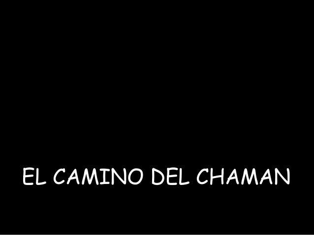 EL CAMINO DEL CHAMAN