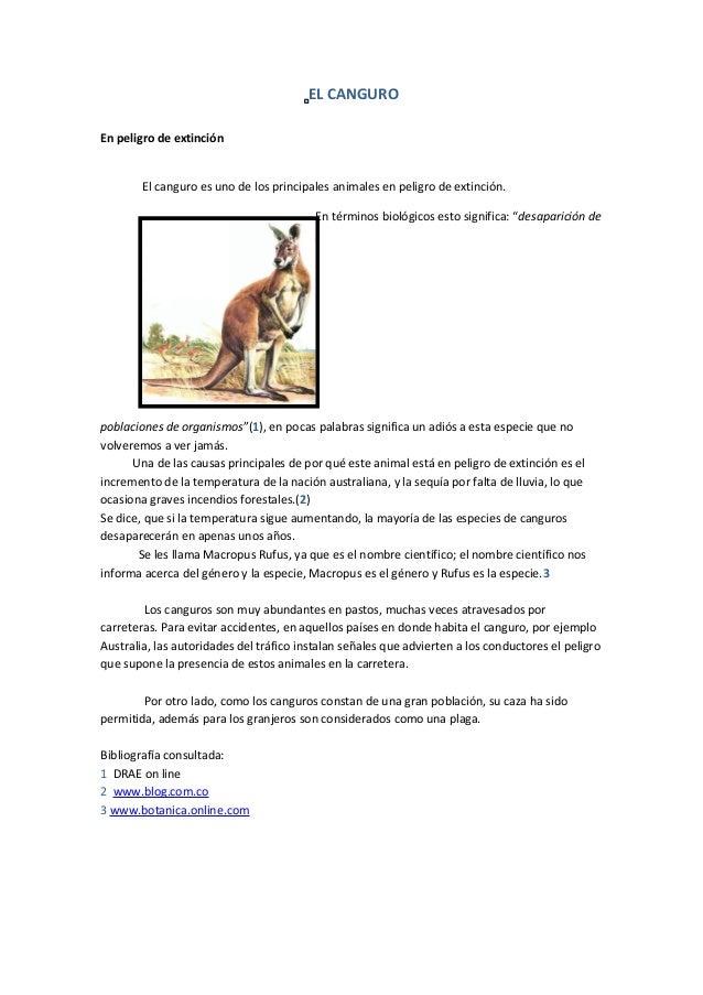 EL CANGUROEn peligro de extinción        El canguro es uno de los principales animales en peligro de extinción.           ...