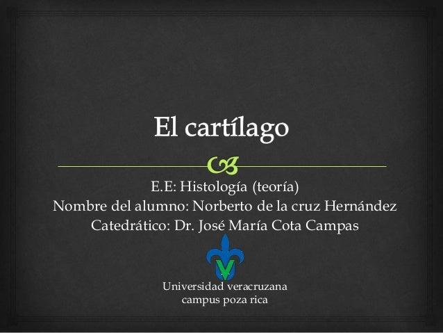 E.E: Histología (teoría) Nombre del alumno: Norberto de la cruz Hernández Catedrático: Dr. José María Cota Campas Universi...