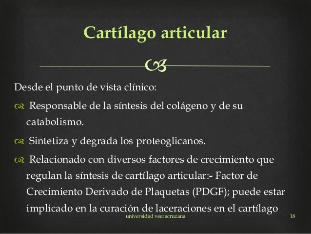  Desde el punto de vista clínico:  Responsable de la síntesis del colágeno y de su catabolismo.  Sintetiza y degrada lo...