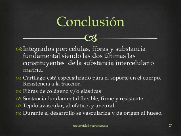  Integrados por: células, fibras y substancia fundamental siendo las dos últimas las constituyentes de la substancia int...