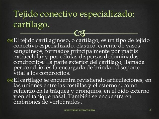 El tejido cartilaginoso, o cartílago, es un tipo de tejido conectivo especializado, elástico, carente de vasos sanguíneo...