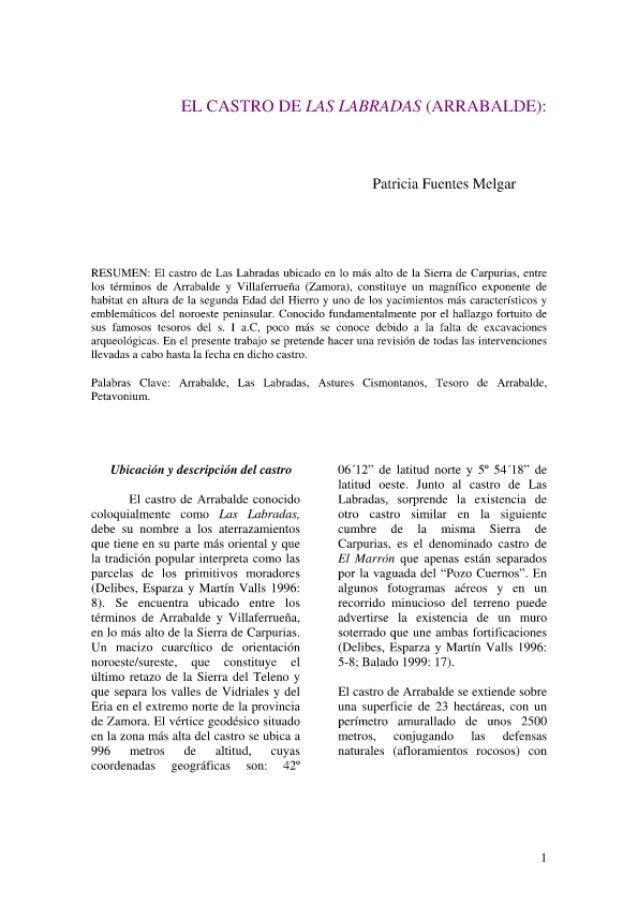 El Castro De Las Labradas (Patricia Fuentes Melgar)