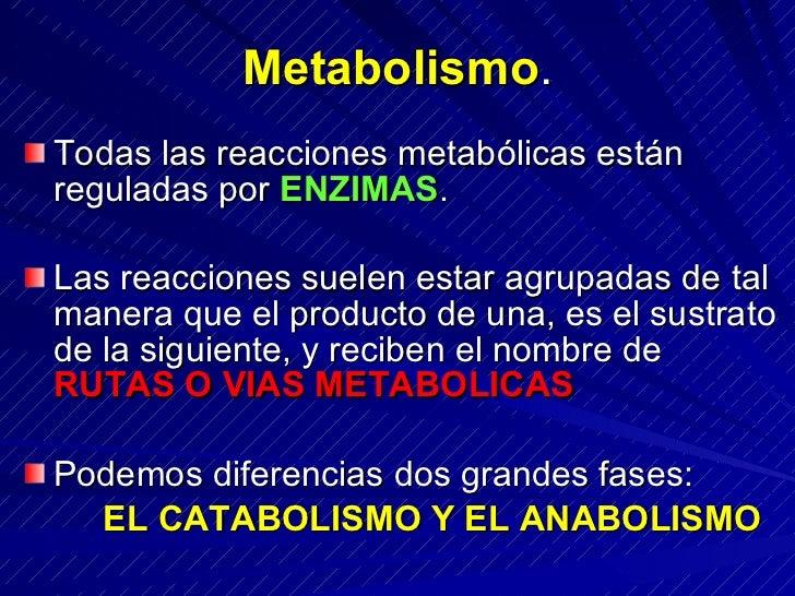 Metabolismo. Todas las reacciones metabólicas están reguladas por ENZIMAS.  Las reacciones suelen estar agrupadas de tal m...