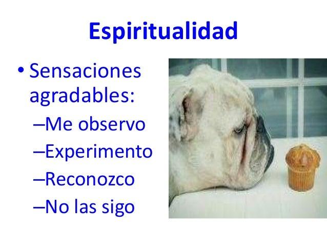 Espiritualidad • Sensaciones agradables: –Me observo –Experimento –Reconozco –No las sigo