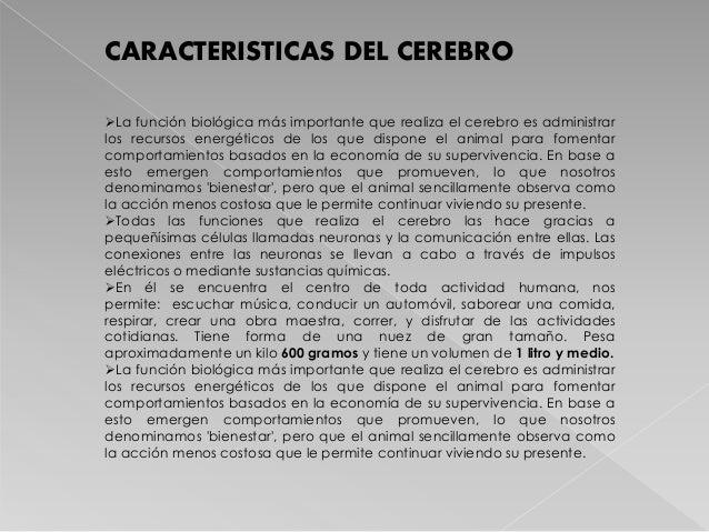 CARACTERISTICAS DEL CEREBRO La función biológica más importante que realiza el cerebro es administrar los recursos energé...