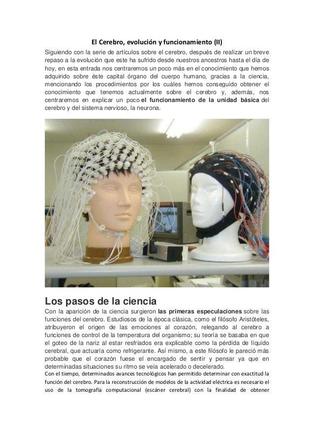 El Cerebro, evolución y funcionamiento (II) Siguiendo con la serie de artículos sobre el cerebro, después de realizar un b...