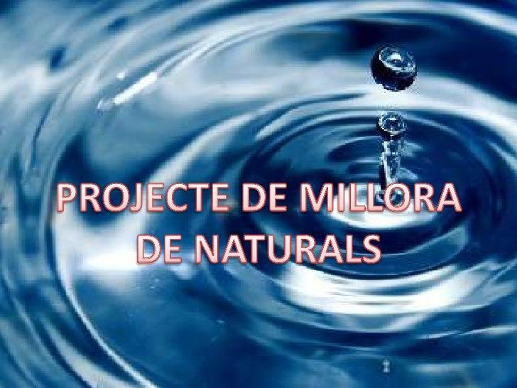 PROJECTE DE MILLORA<br />DE NATURALS<br />