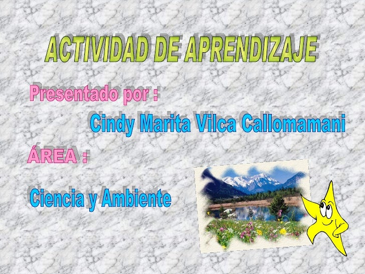 ACTIVIDAD DE APRENDIZAJE Presentado por : Cindy Marita Vilca Callomamani ÁREA : Ciencia y Ambiente