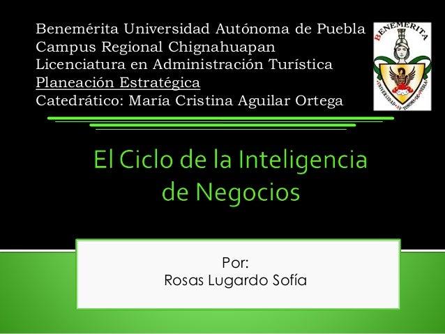 Por: Rosas Lugardo Sofía Benemérita Universidad Autónoma de Puebla Campus Regional Chignahuapan Licenciatura en Administra...