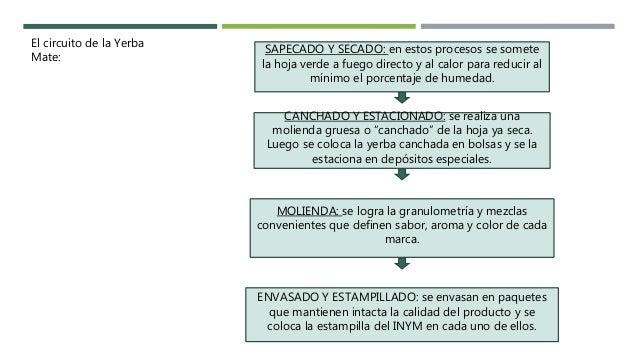 Circuito Yerba Mate : El ciclo productivo de la yerba mate en argentina