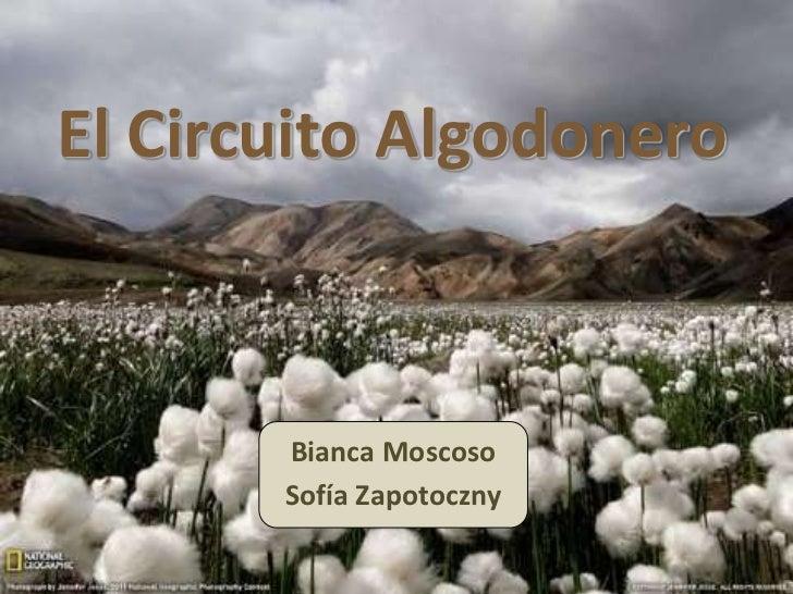 El Circuito Algodonero       Bianca Moscoso       Sofía Zapotoczny