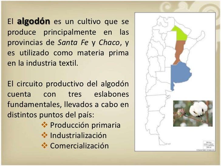 Circuito Productivo Del Algodon : El circuito algodonero