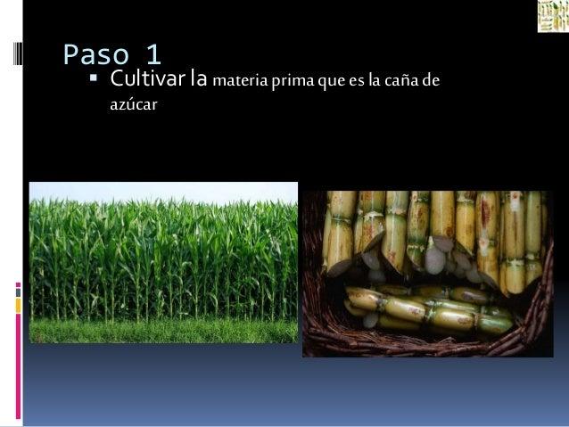 Circuito Productivo De La Caña De Azucar : Circuito productivo de la caña azucar paso a letra