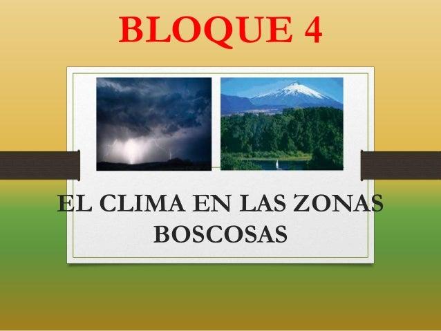 EL CLIMA EN LAS ZONAS BOSCOSAS BLOQUE 4