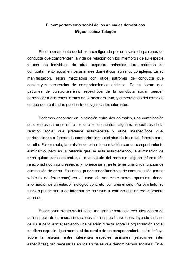 El comportamiento social de los animales domésticosMiguel ibáñez TalegónEl comportamiento social está configurado por una ...