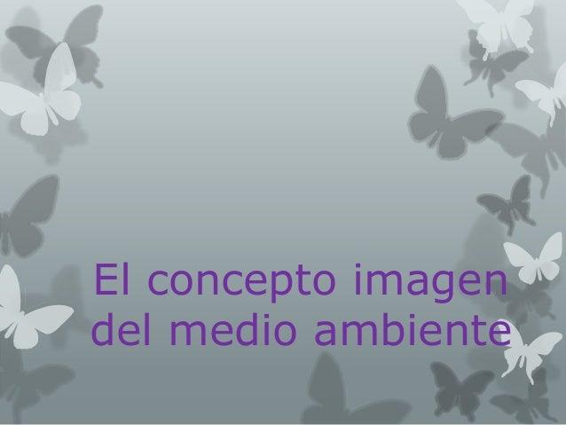El concepto imagen del medio ambiente